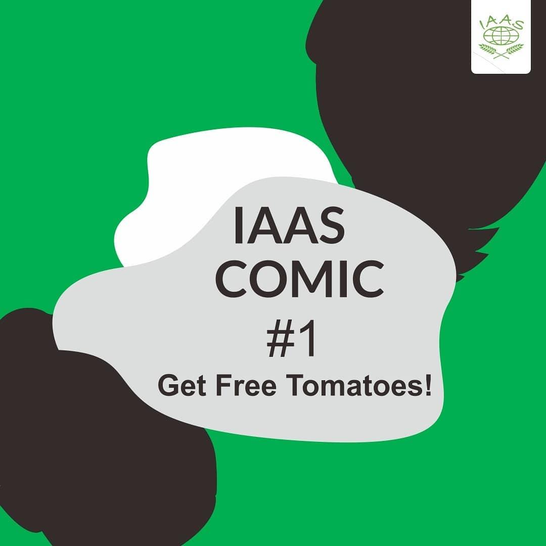 IAAS Comic 1